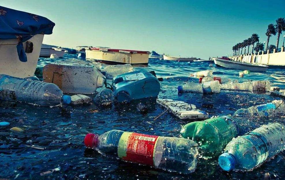 污染对身体健康的影响