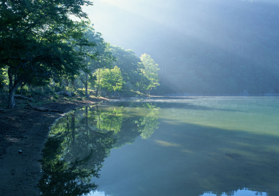 水污染与身体健康的关系,生活中如何安全饮水