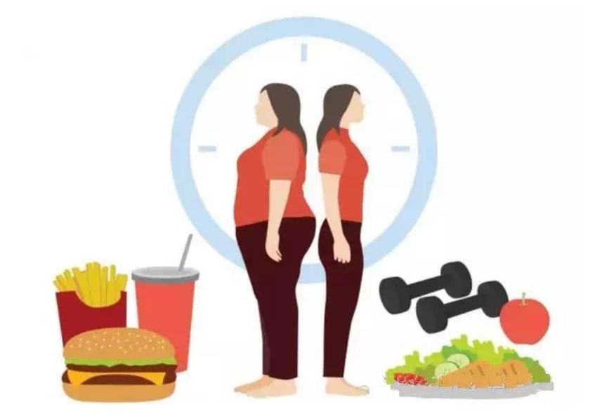 肥胖当以预防为主,治疗为辅