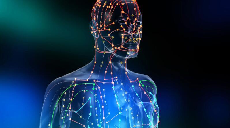 人体所需要的能量是什么,它是如何吸取?如何消耗的?